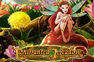 Enchanted Meadow